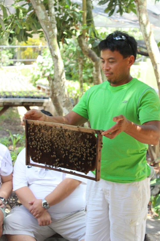 Will holding bees!
